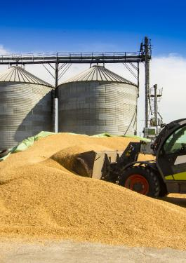 Someone using machinery to scoop grain from a pile on site