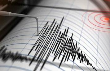 Seismic Risk Assessments